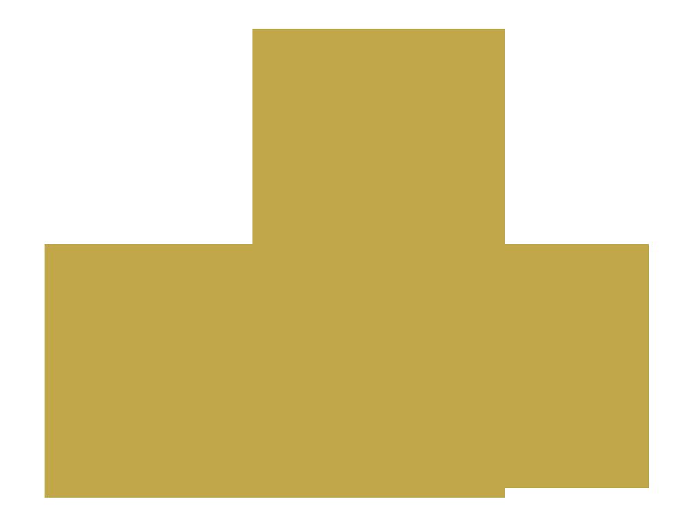 MUNIN CONSULT